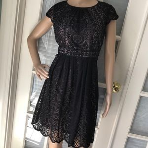 Adrianna Papell black lace overlay cocktail dress